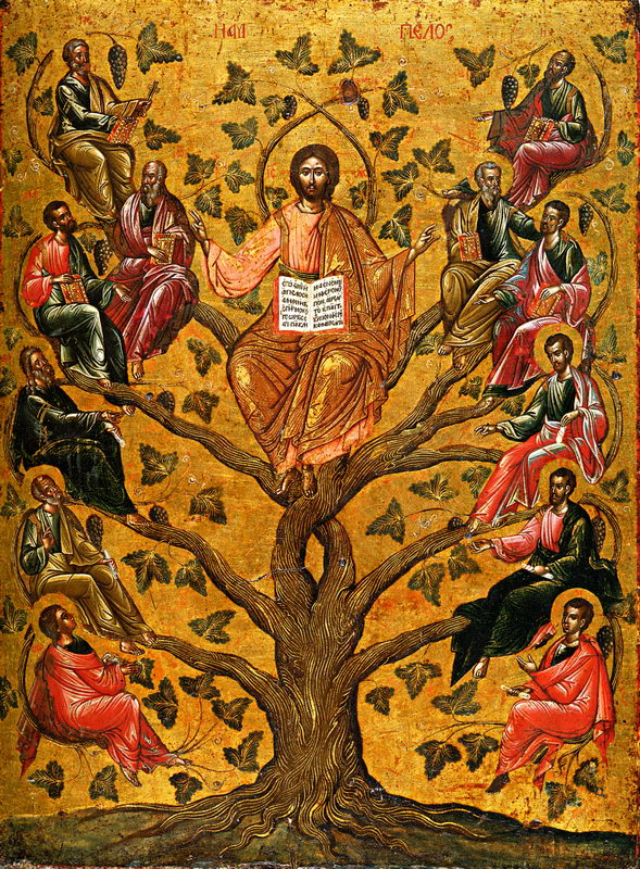 Cultura Bíblica: ¿Qué significa estar unidos a Jesús?