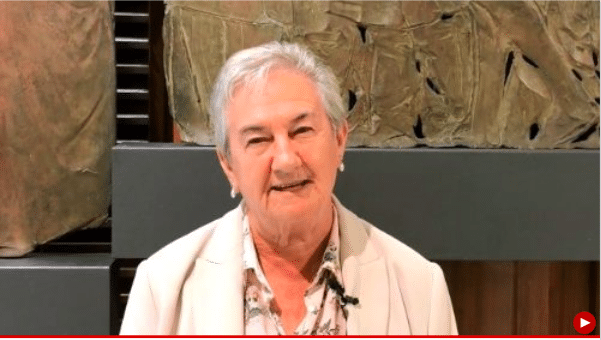 #Synod2018, Hermana María Luisa Bersoza