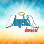 Angelus dominical: primero gatear y luego caminar