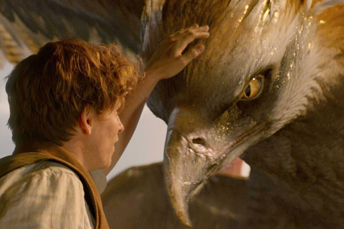 Animales Fantásticos, de David Yates, goza de excelentes efectos.