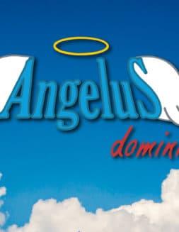 Ángelus dominical 11 noviembre 2018