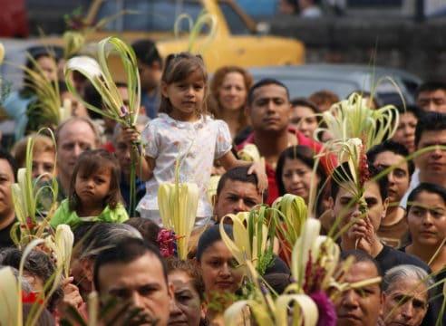 ¿Qué hacer con las palmas benditas que dan en Semana Santa?