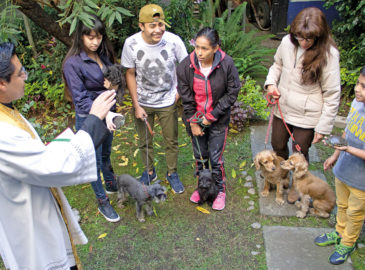 Bendición de mascotas, una forma de dar gracias