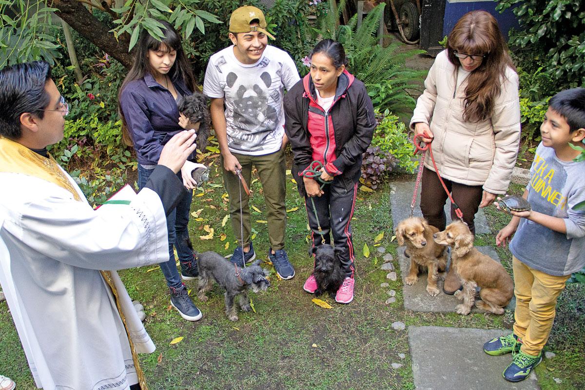 La bendición a las mascotas tiene un sentido para la gente: el contemplar, admirar y dar gracias a Dios por su obra maravillosa.