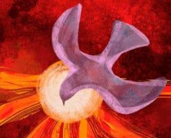 ¿Por qué al Espíritu Santo se le representa con una paloma?