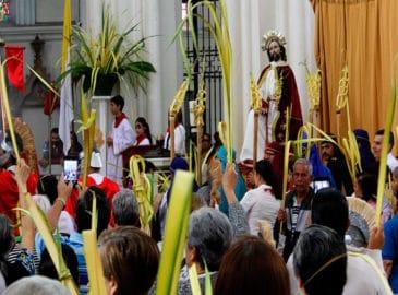 Domingo de Ramos: ¡Las palmas arriba para recibir a Jesús!