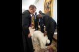 ¿Por qué el Papa besó los pies de los líderes de Sudán del Sur?