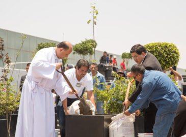 Jornada ecológica en la Basílica de Guadalupe