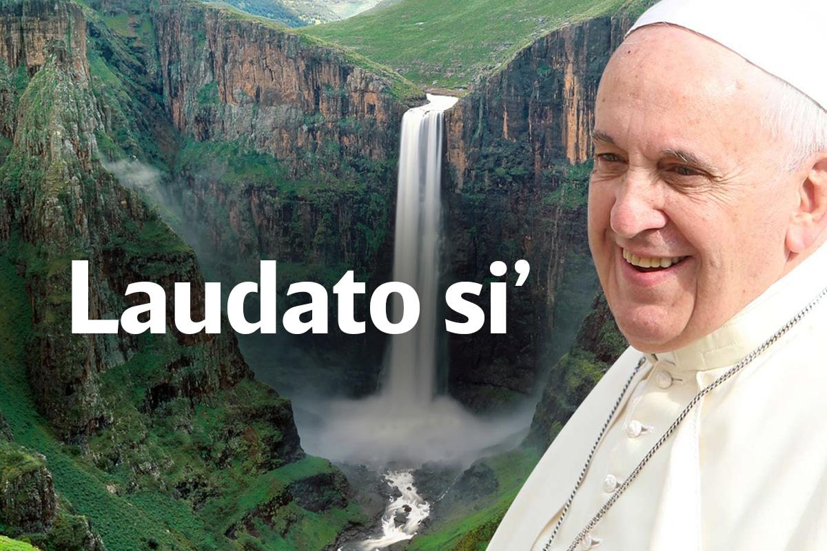 En Laudato si', el Papa Francisco reflexiona sobre el estado del medio ambiente y la ecología.