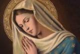 ¿Cómo defender a la Virgen María?