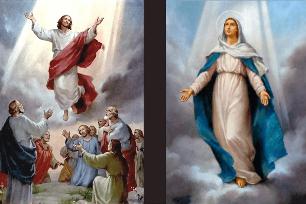 La Ascensión del Señor y la Asunción de María.