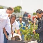 ¿En qué consiste la Semana Laudato Si', convocada por el Papa?