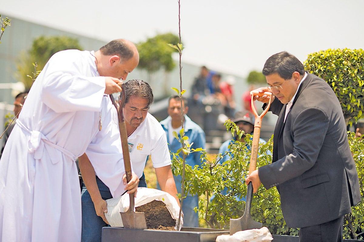 La Iglesia se preocupa por el cuidado de la casa común. Foto: María Langarica