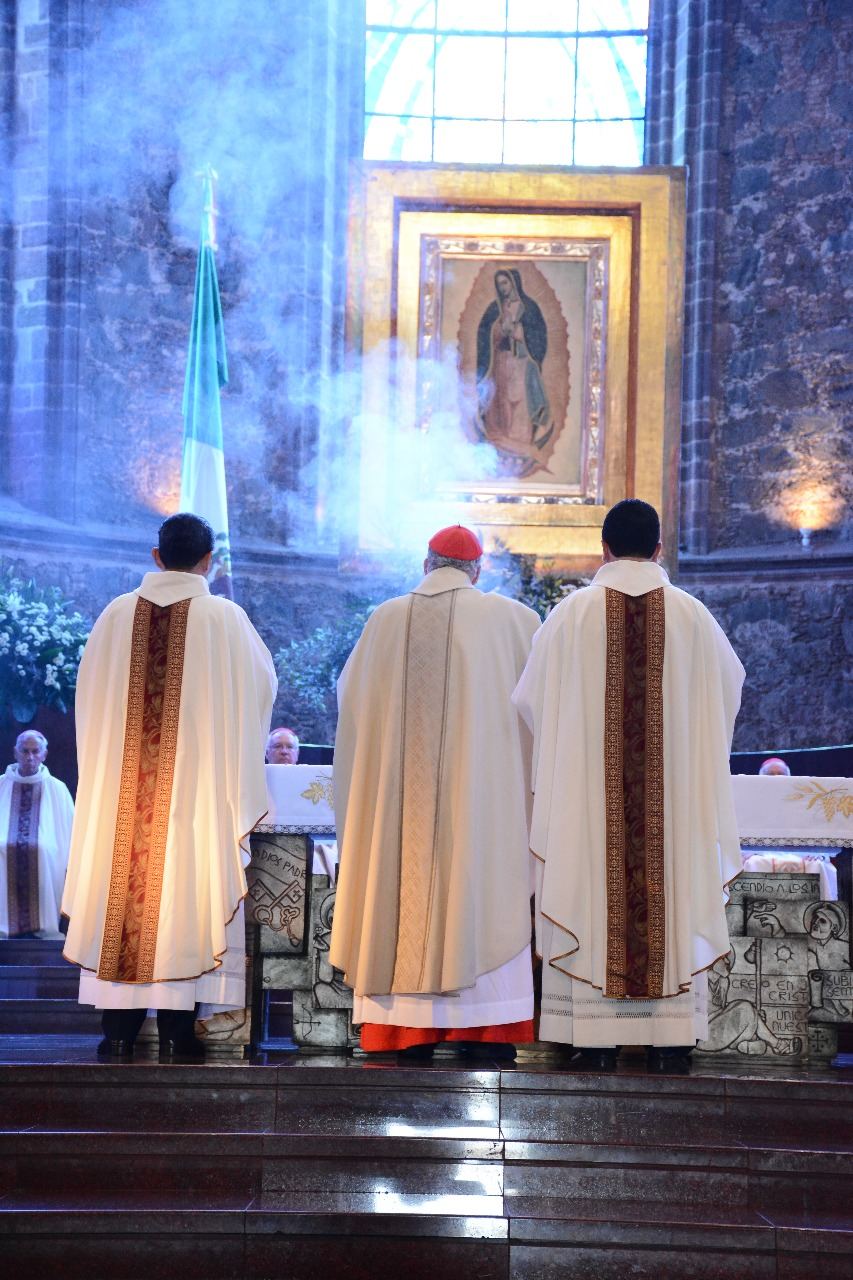 El Cardenal Javier Lozano Barragán radica en la Ciudad de Roma, Italia. Foto: Diócesis de Zamora