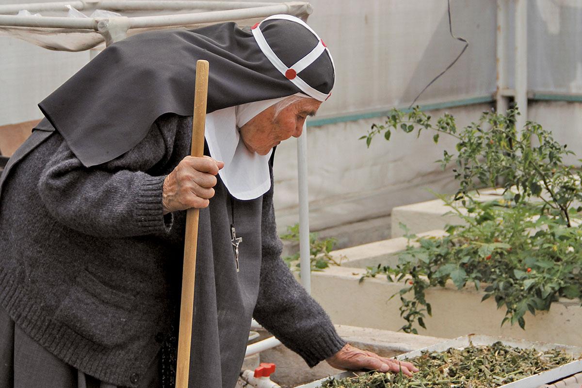 Cerelina en la cosecha de chile de árbol, un producto para el autoconsumo. Foto: Alejandro García