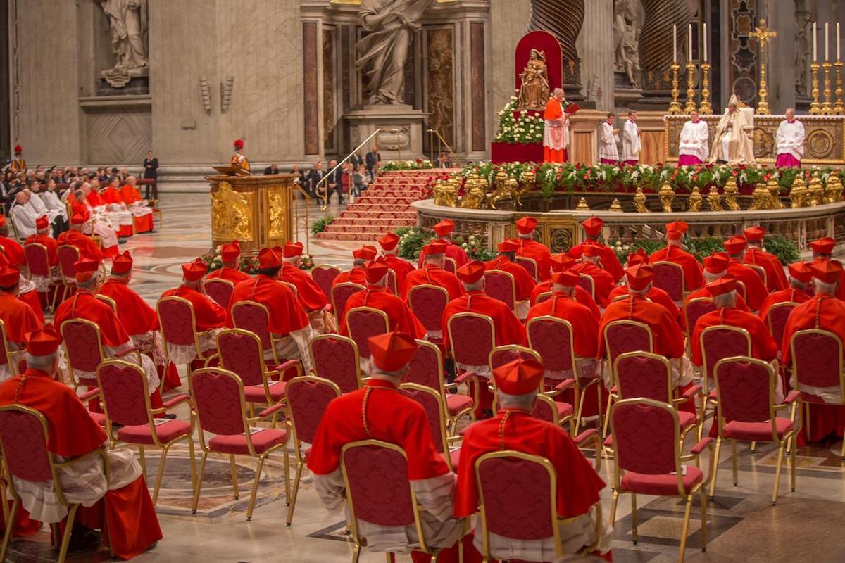 Creación de nuevos cardenales. Foto: María Langarica