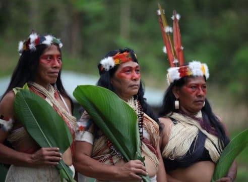 Los pueblos indígenas deben ser protagonistas de su historia