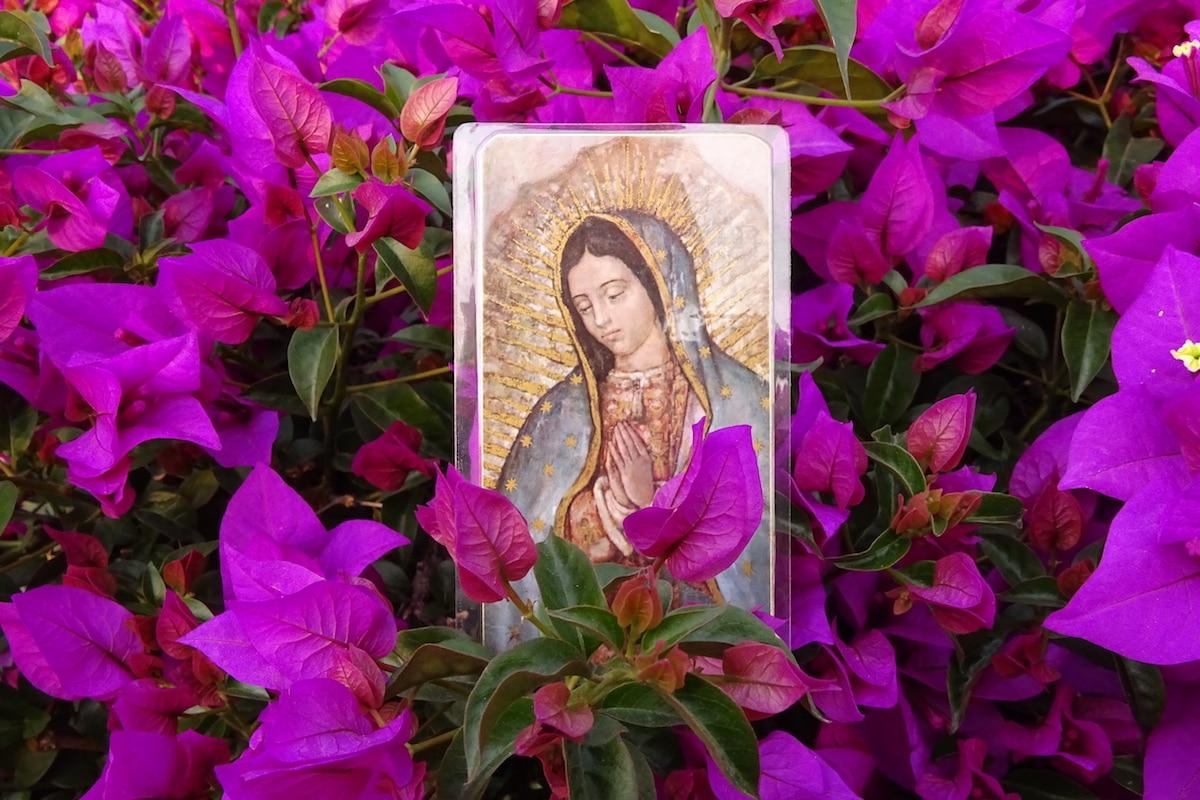 Imagen de la Virgen de Guadalupe rodeada de flores. Foto: Cathopic