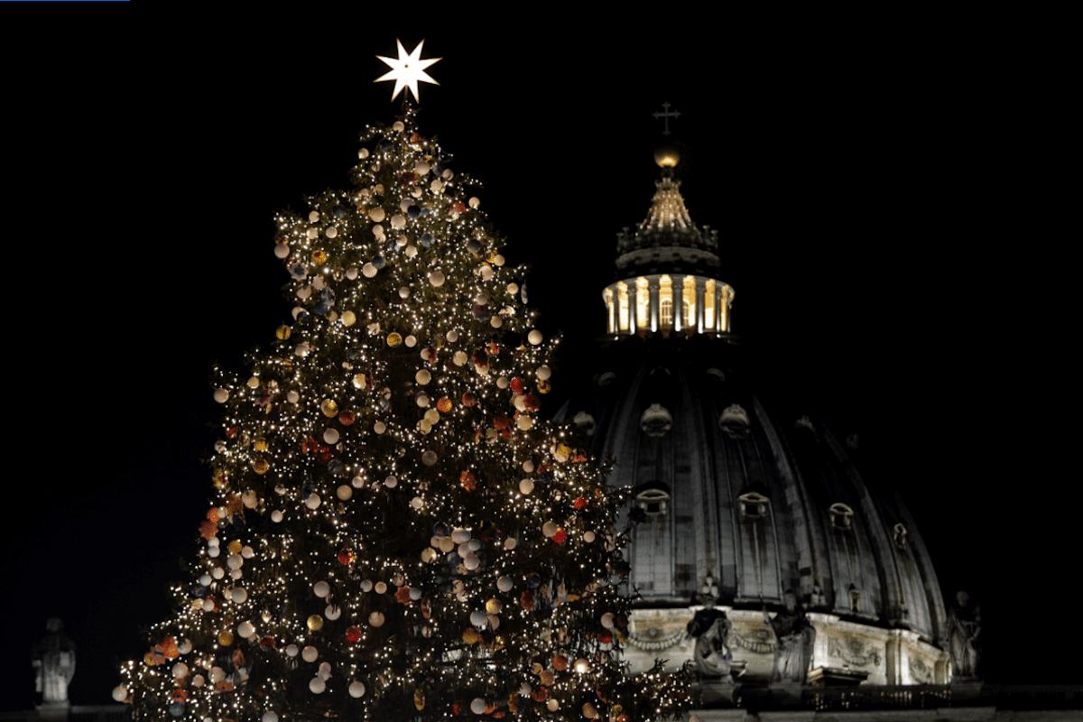 Árbol de Navidad en el Vaticano. Foto: Agencias