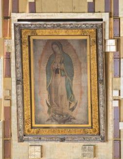 5 acciones que propone la CEM para celebrar a la Virgen de Guadalupe