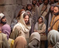 Dejemos la actitud empecinada y seamos familia en Dios