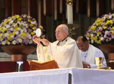 Homilía del Arzobispo Carlos Aguiar en el VII Domingo de Pascua