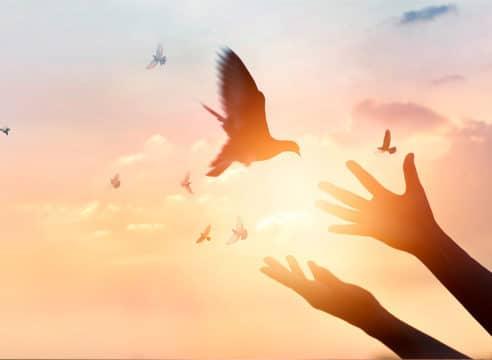 Pentecostés 2021: ¡Ven Espíritu Santo y guíanos!