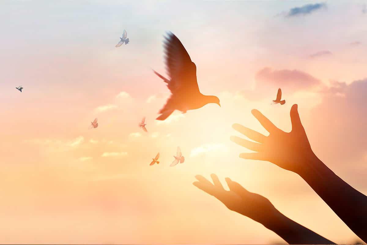 El Espíritu Santo derrama sus dones sobre nosotros.