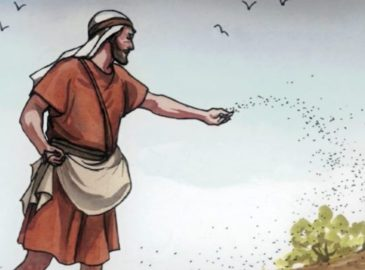 Cultura Bíblica: ¿Qué significa la 'tierra buena' en la parábola del Sembrador?