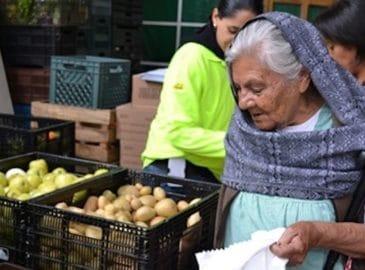 Impiden el desperdicio de toneladas de alimento; lo dan a necesitados