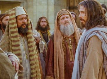 Quien decide amar a Dios, no puede odiar a los demás