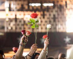 Misa de las Rosas: ¿qué es y por qué se celebra?