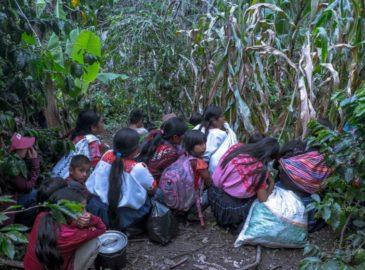 En Chiapas, un grupo paramilitar atacó a voluntarios de Cáritas