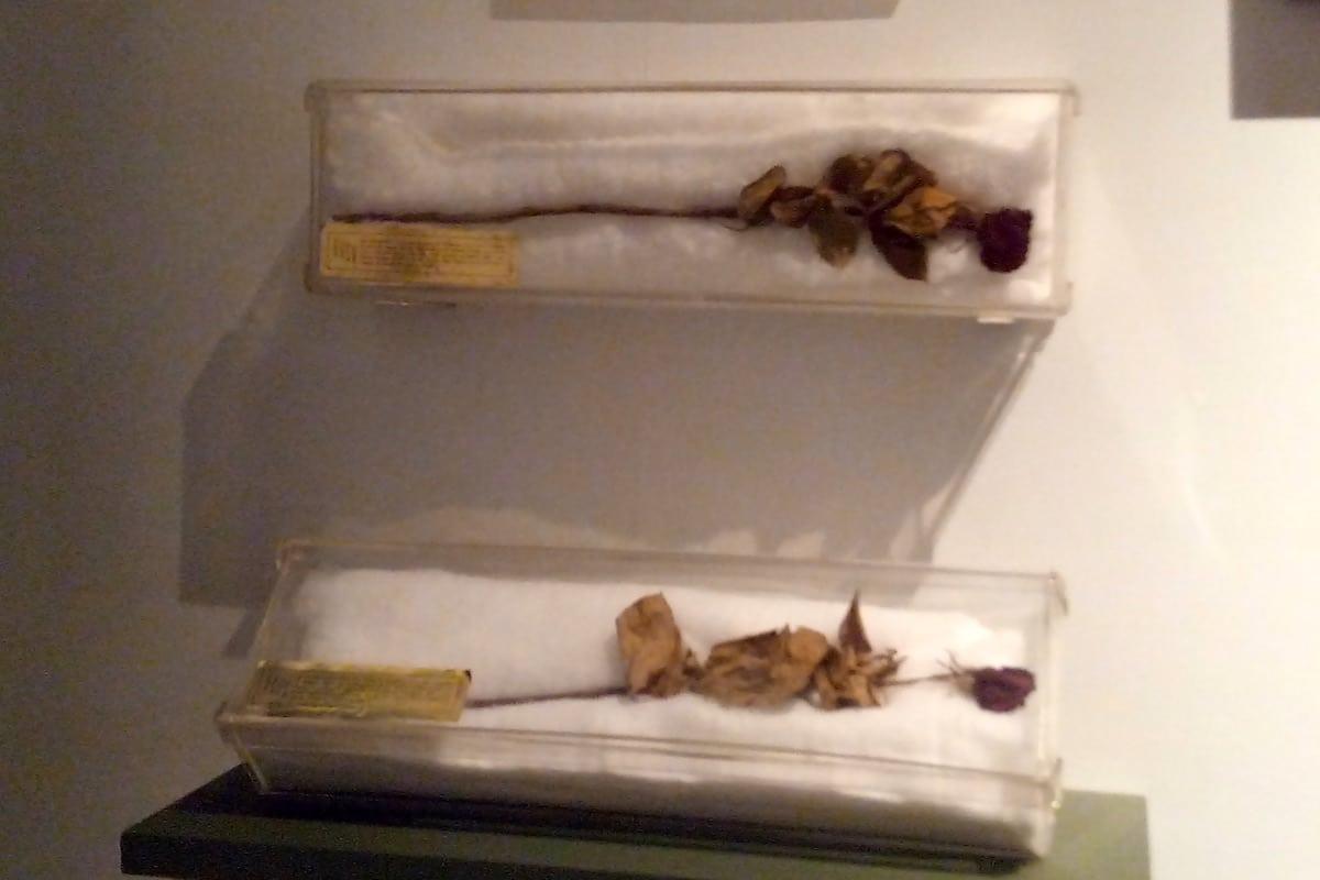 En el Museo de la Basílica de Guadalupe se pueden apreciar dos de las flores que Jackie Kennedy ofrendó a la Virgen de Guadalupe. Foto: Cynthia Fabila/DLF