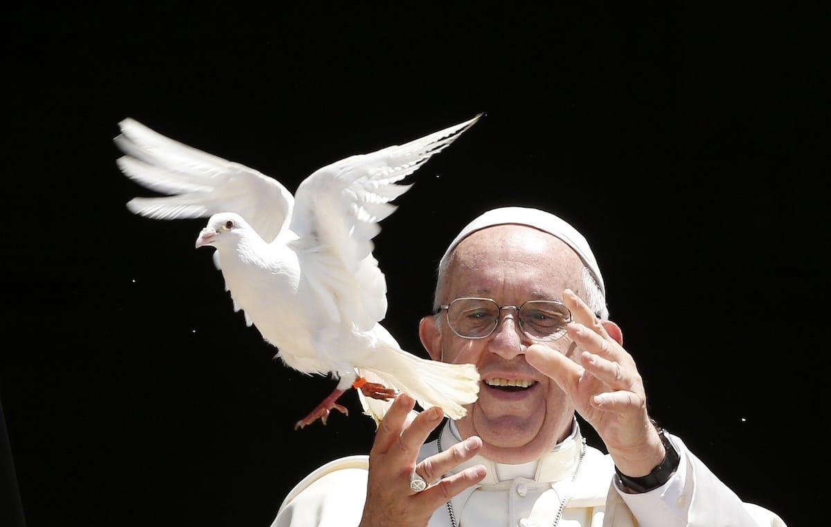 Jornada Mundial de la Paz.
