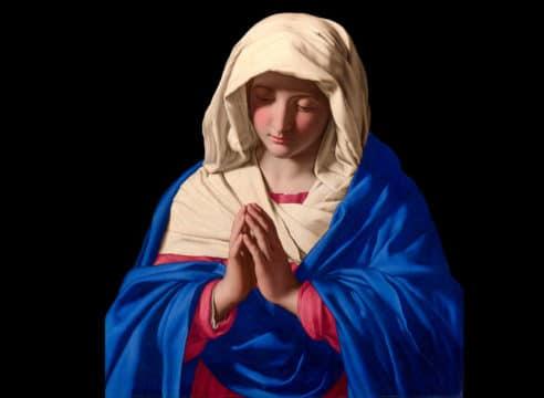 ¿Por qué creemos que la Virgen María fue concebida sin pecado?