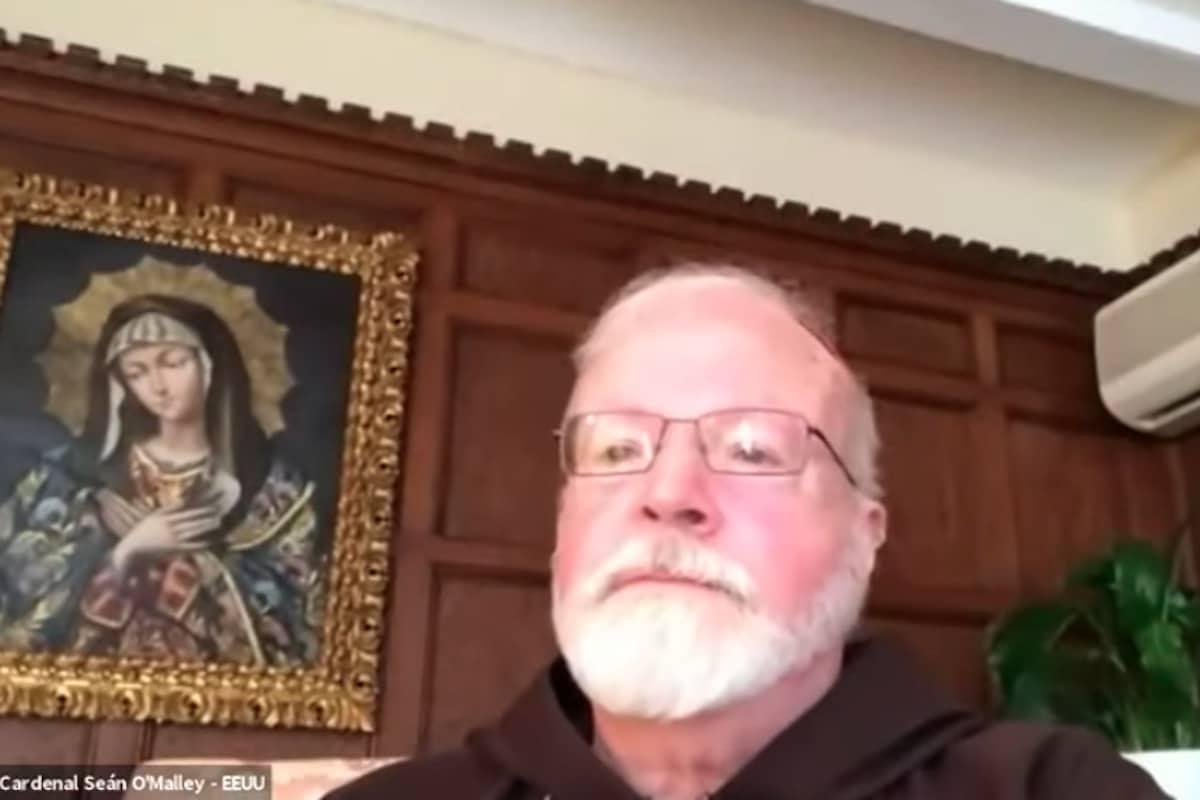 Cardenal Sean O'Malley,arzobispo de Boston. Foto: Zoom