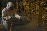 Afectada por insectos, Catedral Metropolitana cierra sus puertas para fumigar