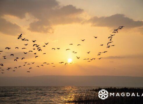 Disfruta de los atardeceres en el Mar de Galilea desde tu hogar