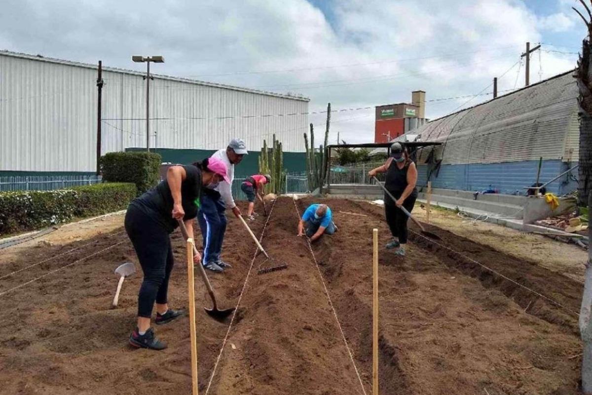 Jardinería es una de las habilidades que aprenden en el centro de recursos de esta iglesia en California. Foto: Global Sisters Report