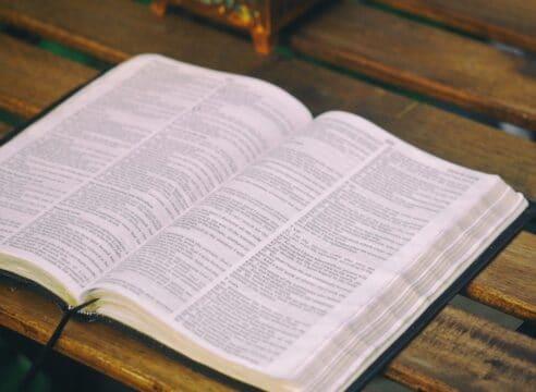 ¿Qué son los Salmos en la Biblia y cuántos son?