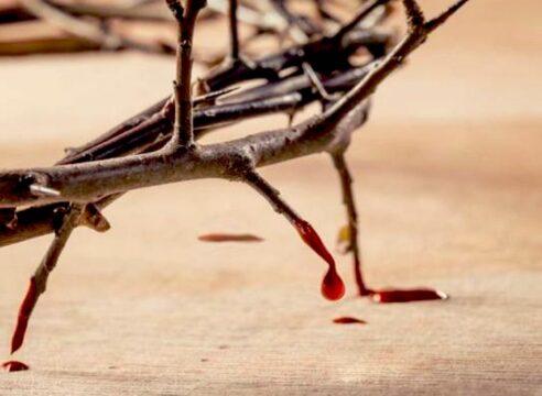 ¿Por qué la Iglesia celebra la Preciosísima Sangre de Cristo?
