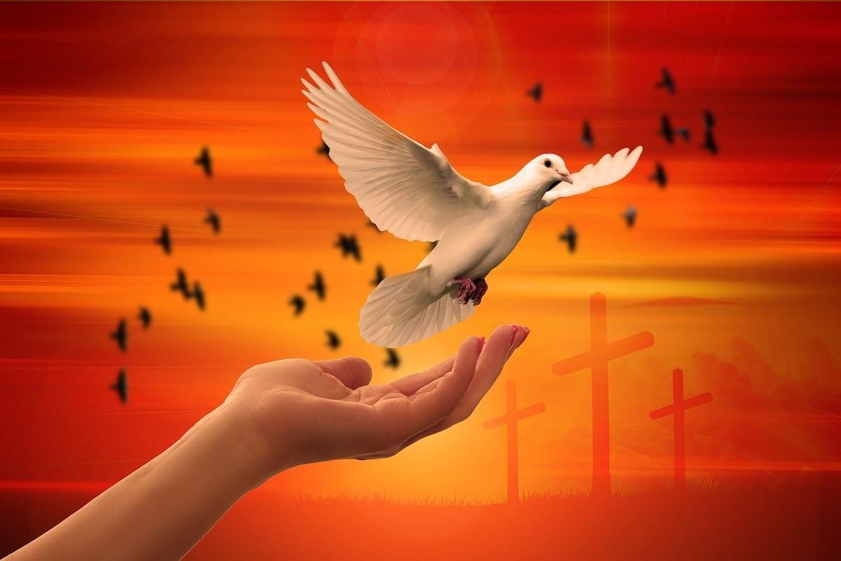 Día Internacional de la Paz: Encíclicas que relatan la importancia de la paz
