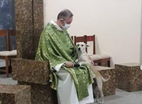 Sacerdote brasileño recoge perros callejeros y pide a fieles adoptarlos